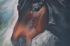 Лошадка, Бумага. Пастель.